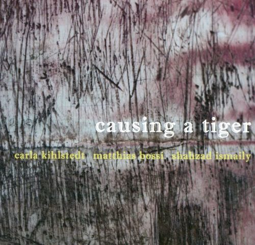 Listen to the lovely 'No Funeral At All' from 'Causing a Tiger' (2010)