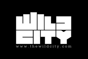 Wild City spoke to us about some emerging Pakistani artists